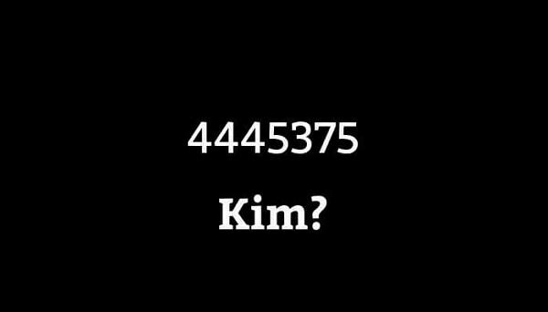4445375 kim